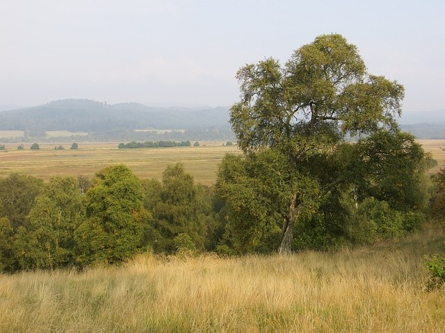 Overlooking Insh Marshes
