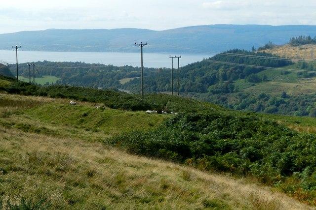 Linear mound near the Greenock Cut