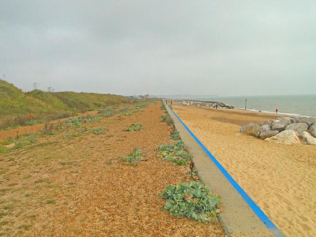 Felixstowe sea wall and beach at Landguard