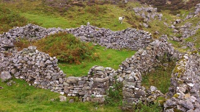 Abandoned Sheepfold on Herring Rake