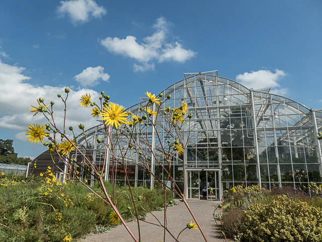Dry Garden, Royal Horticultural Society Garden, Wisley