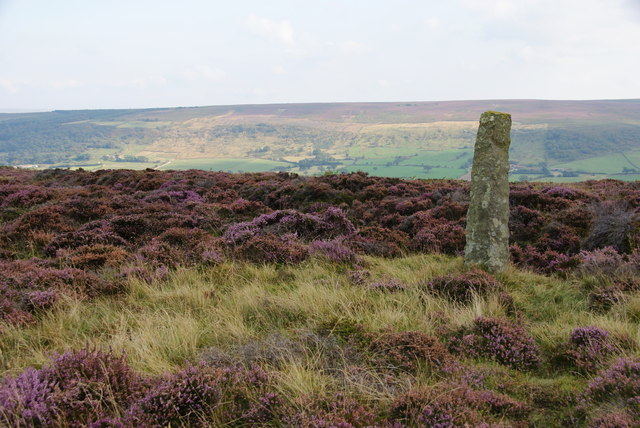 Standing stone on Glaisdale Low Moor