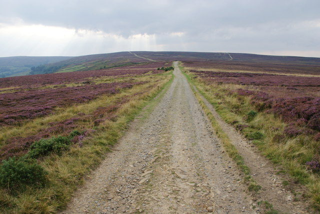 Path on Glaisdale Rigg