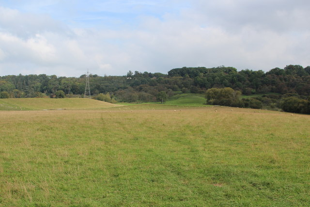 Field west of Eardiston