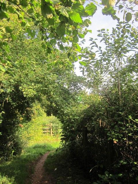 Bridleway approaching Browns Bridge Road