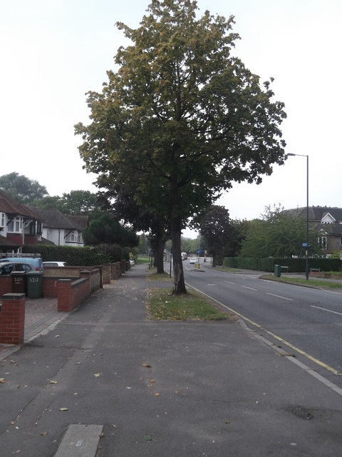 Whitchurch Lane, Canons Park