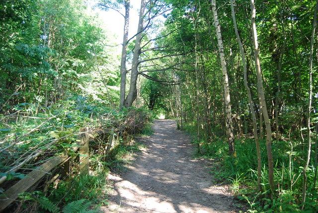 Eden Valley Walk, Park Wood