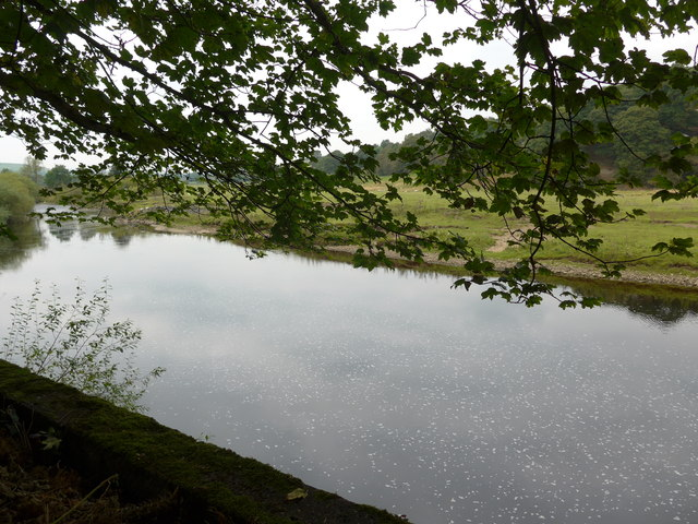 A peaceful River Wharfe at Lower Mill Village