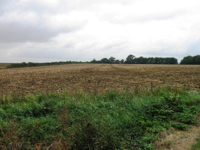Field opposite Hemington Lodge