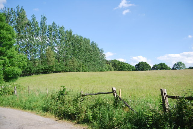 Field south of Park Wood