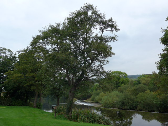 River Wharfe just after leaving Addingham