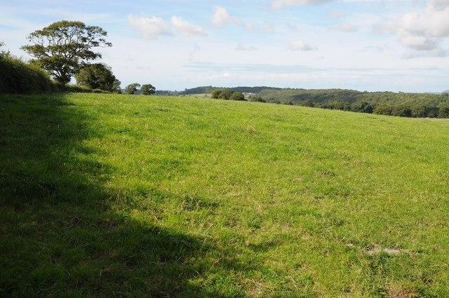 Farmland above the Elwy valley
