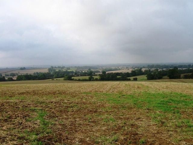 Fields west of A428