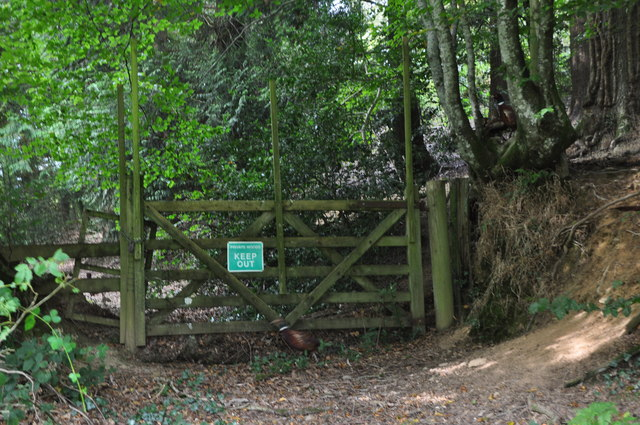 West Somerset : Small Track & Gate