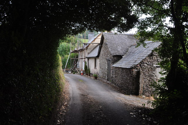 West Somerset : Country Lane