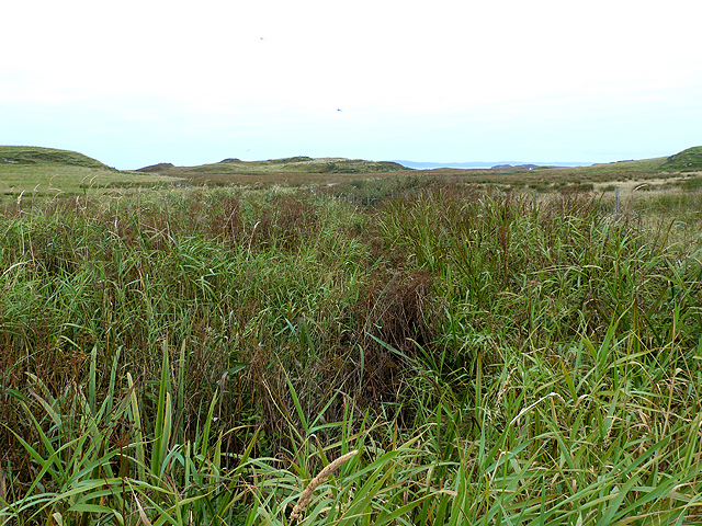 Marshy ground below Cnoc Glas