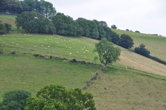 West Somerset : Countryside Scenery
