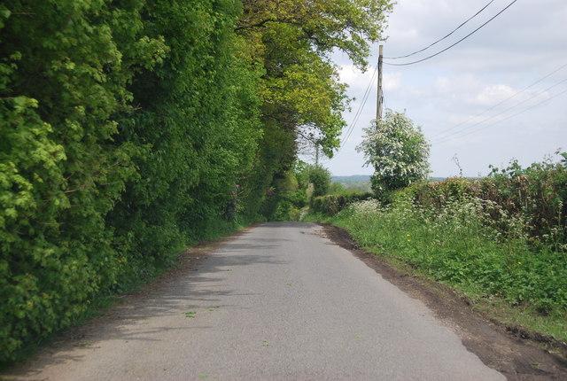 Sedgewick Lane near Bull's Farm