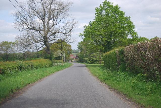 Sedgewick Lane