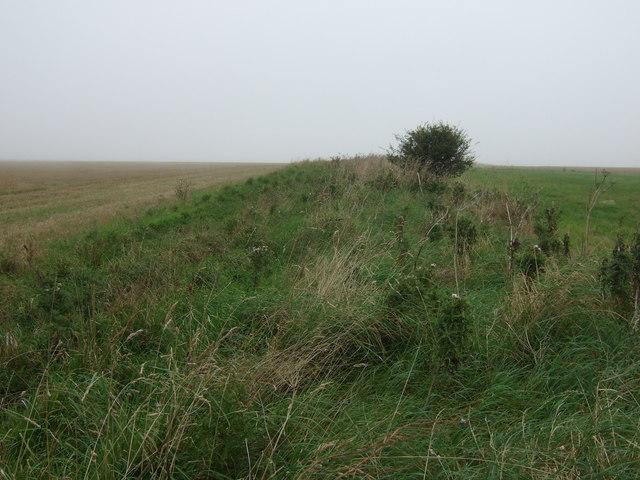 Long disused farm track