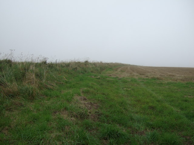 Farmland beside track