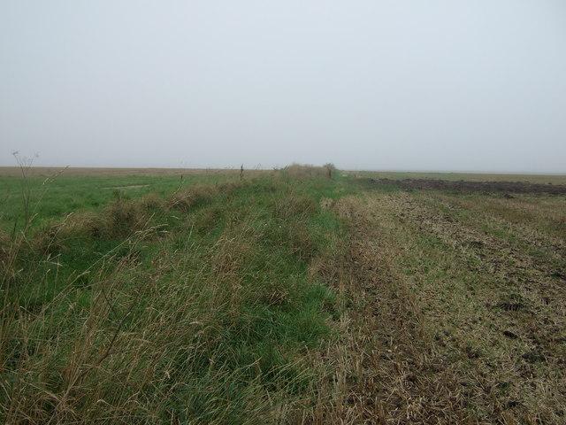 Track over Haisthorpe High Field