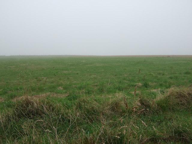 Farmland, Haisthorpe High Field