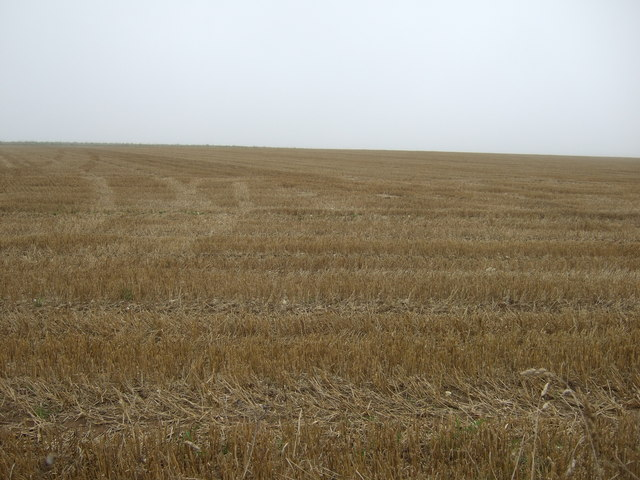 Stubble field, Haisthorpe High Field