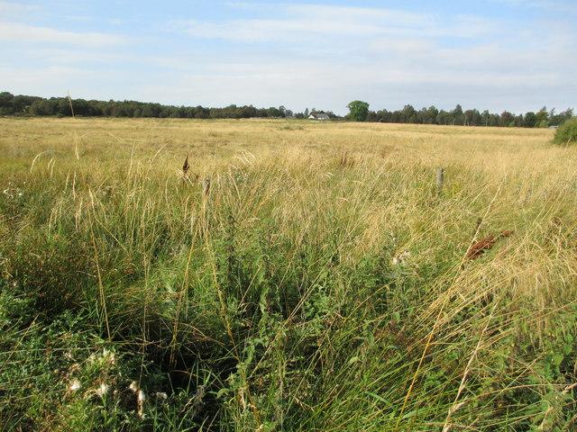 Farmland near Feabuie