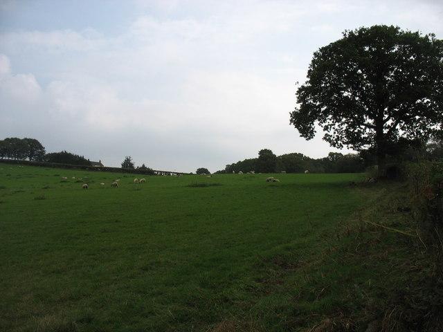 Country near Rheol