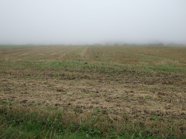 Farmland, Haisthorpe High Field