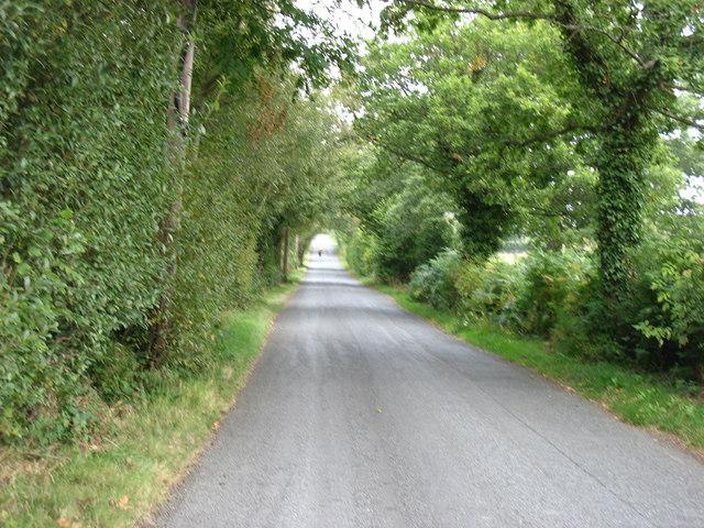 The lane to Nant-glas