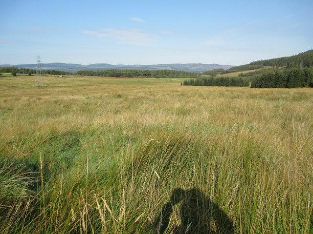 Rough grazing near Claggersnich