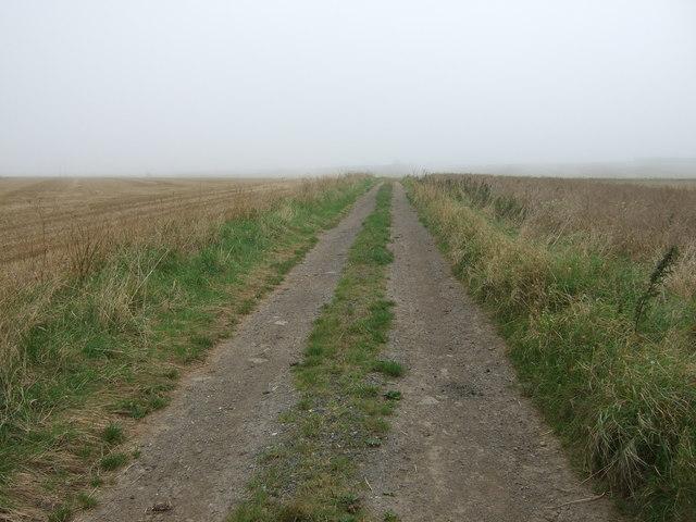 Farm track heading east Haisthorpe High Field