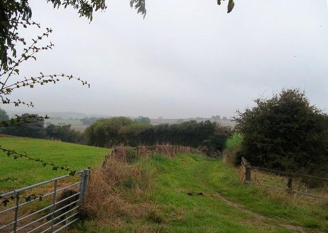 Footpath and Fields near Norwood Lodge