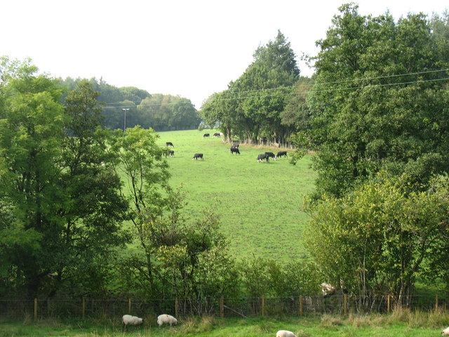Country south-west of Newbridge-on-Wye