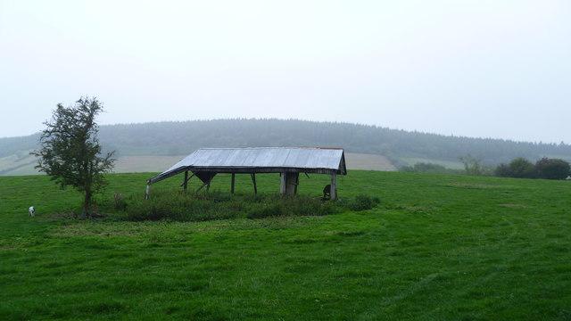 Deserted barn in a field