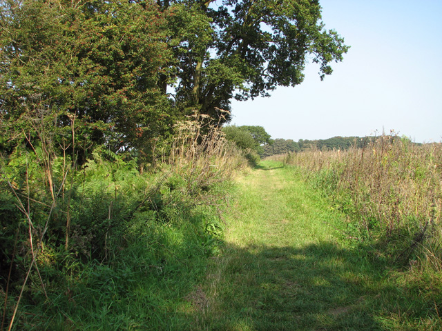 Footpath to Hagg Wood