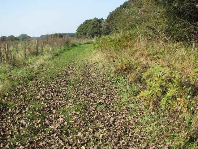 Footpath past Hagg Wood