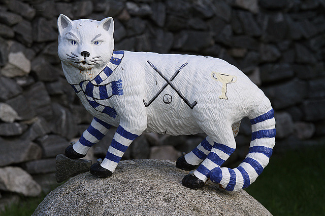 A wildcat model at Newtonmore Shinty Ground