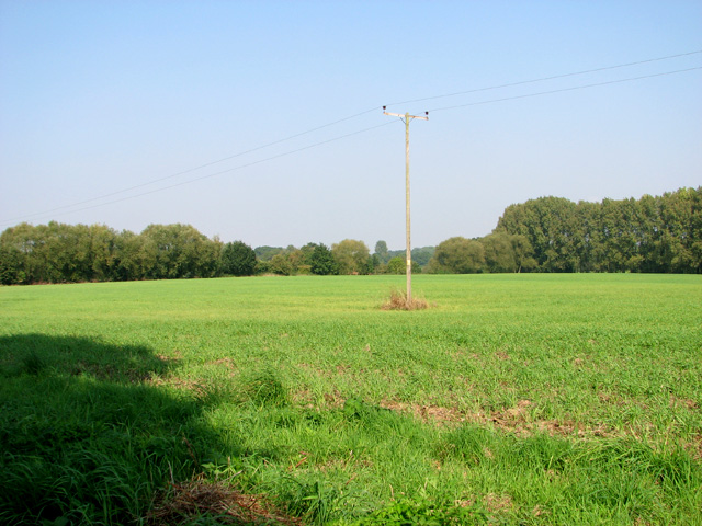 Crop field by Leys Farm