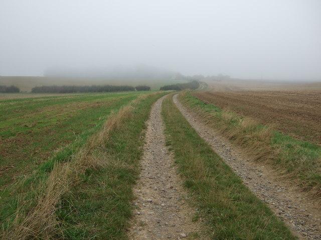 Track towards Haisthorpe
