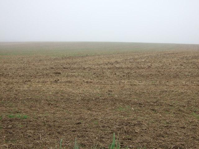 Haisthorpe Field