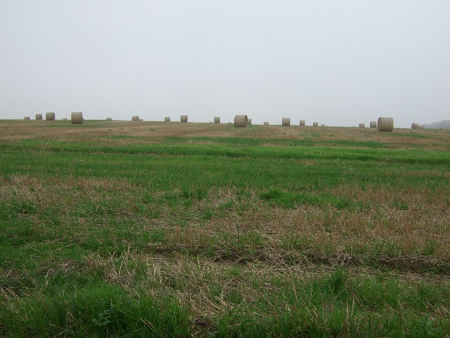 Stubble field with bales, Thornholme Field
