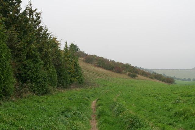 Recreated heathland? Bridleway to Rothwell