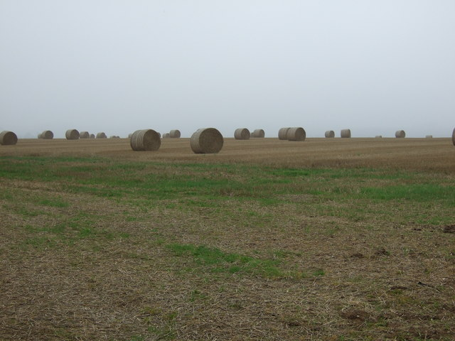 Stubble field and bales, Thornholme Field