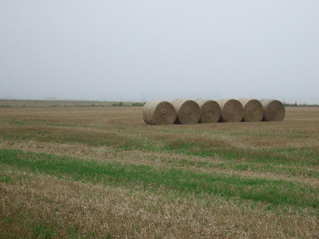 Bales in stubble field, Thornholme Field