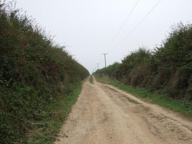Green lane over Thornholme Field