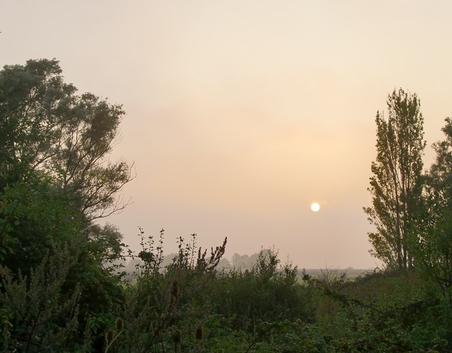 A misty September evening, Halstow Marshes (2)