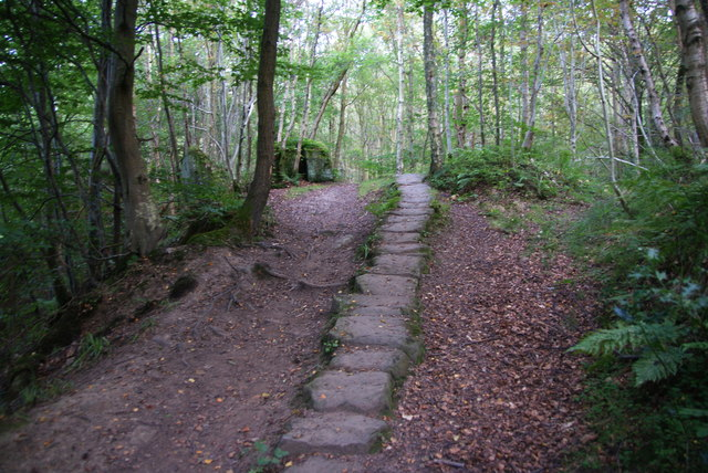 Causey-path in East Arnecliff Wood